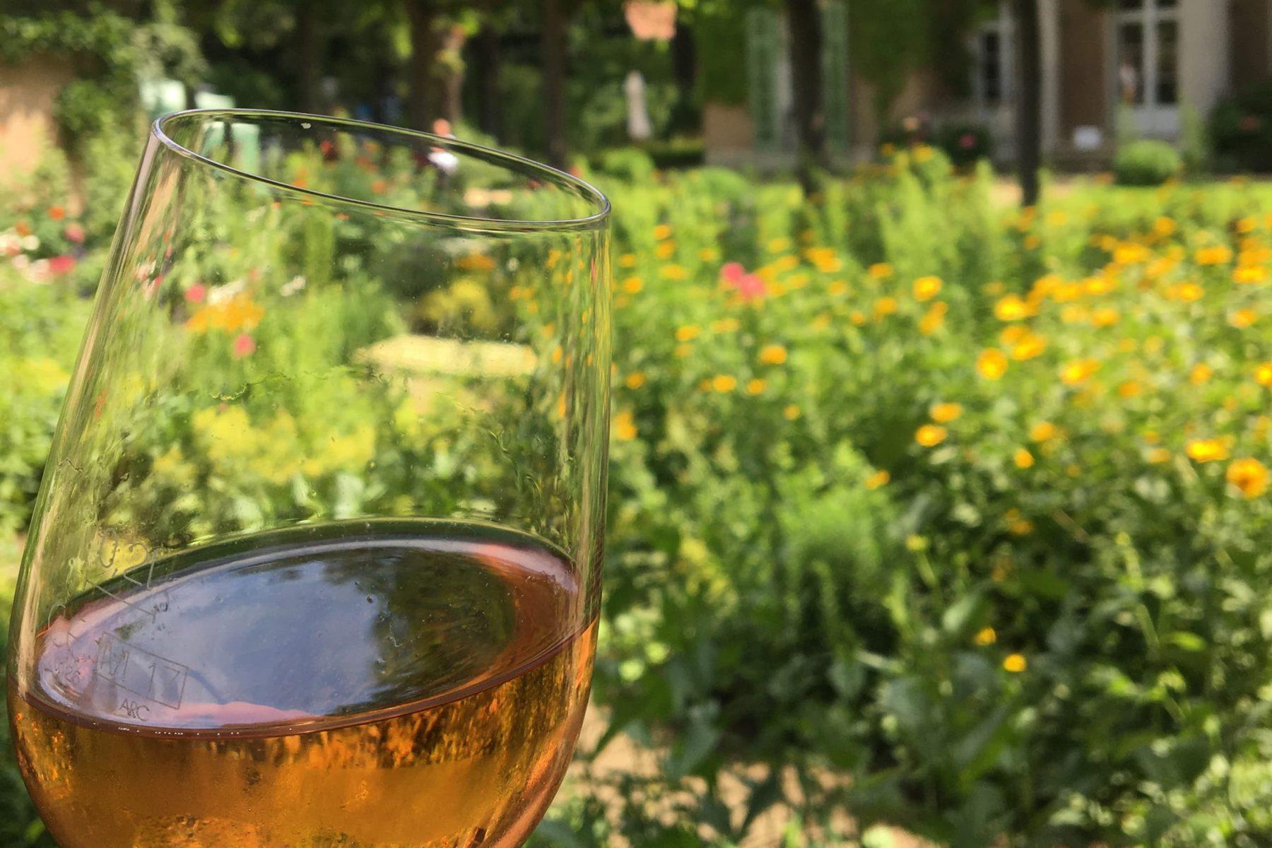 Weinglas mit Rosé in Nahansicht vor einem unscharfen Gartenhintergrund.