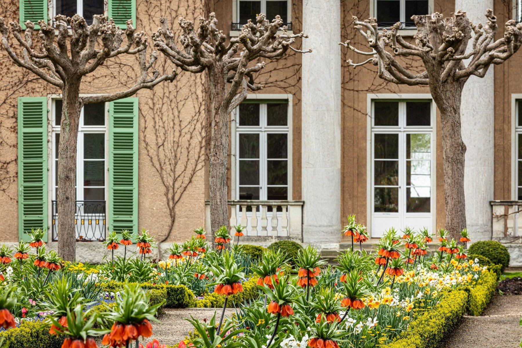 Der Blick geht auf die blühende Bepflanzung vor der Frontseite der Liebermann-Villa.