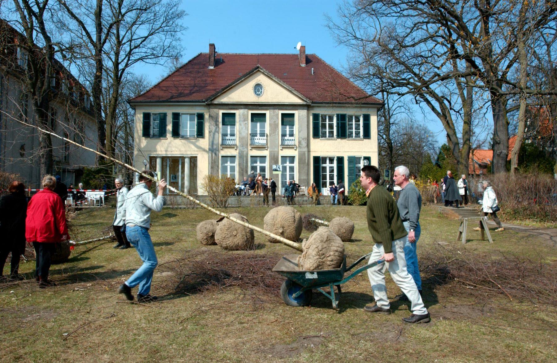 Mehrere Personen helen beim Einpflanzen junger Birken im Garten der Liebermann-Villa. Im Hintergrund ist die Rückfassade der Liebermann-Villa zu sehen.